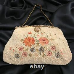 FAB! French Micro Beaded Point de Beauvais Purse Enameled Frame Roses Flowers